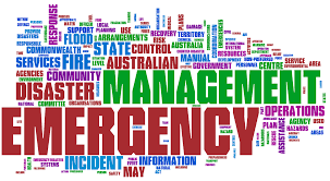 Issues and Challenges for Emergency Management in Health