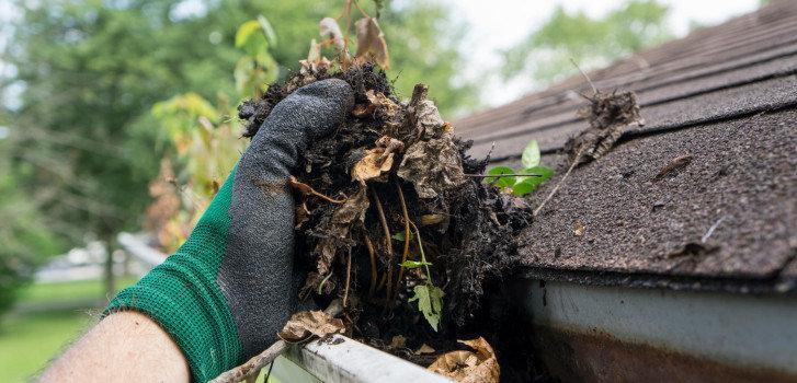 rain gutter cleaning